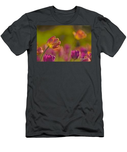 Dank U Men's T-Shirt (Athletic Fit)