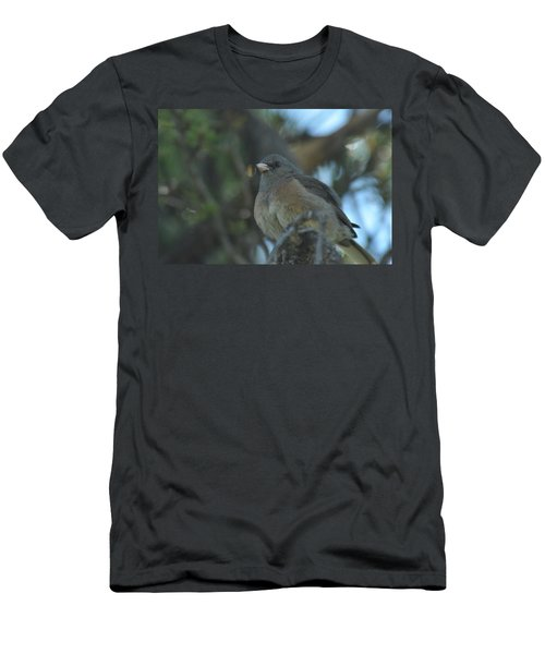 Dark-eyed Junco Men's T-Shirt (Athletic Fit)