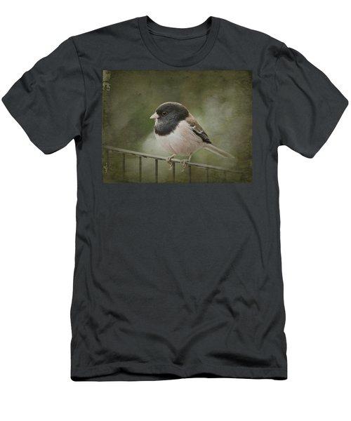 Dark-eyed Junco  Men's T-Shirt (Athletic Fit)