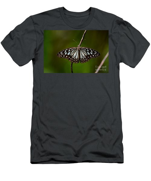 Dark Glassy Tiger Butterfly On Branch Men's T-Shirt (Athletic Fit)