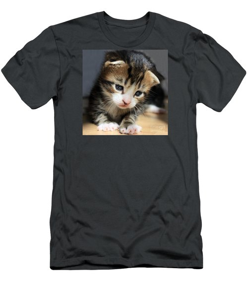 Men's T-Shirt (Slim Fit) featuring the photograph Daydreamer Kitten by Terri Waters
