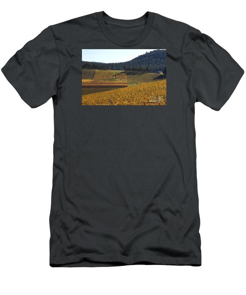 golden vines-Victoria-Australia Men's T-Shirt (Slim Fit) by Joy Watson