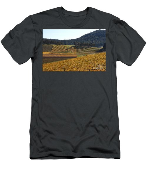 golden vines-Victoria-Australia Men's T-Shirt (Athletic Fit)