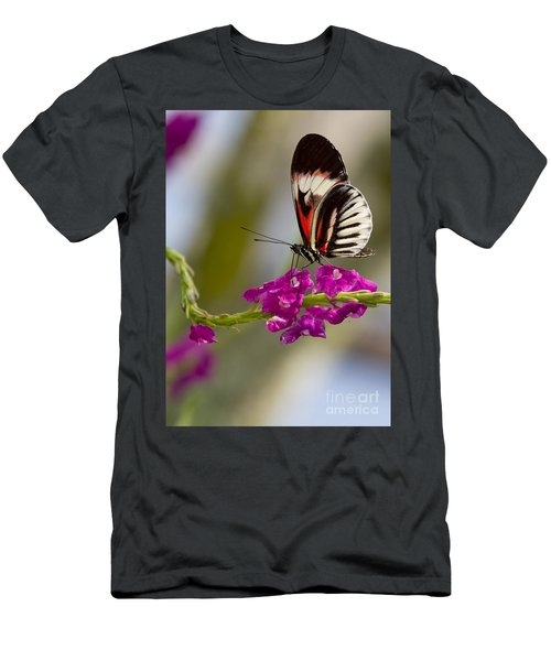 delicate Piano Key Butterfly Men's T-Shirt (Athletic Fit)