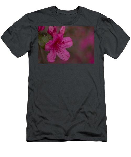 Delightful Azalea Men's T-Shirt (Athletic Fit)