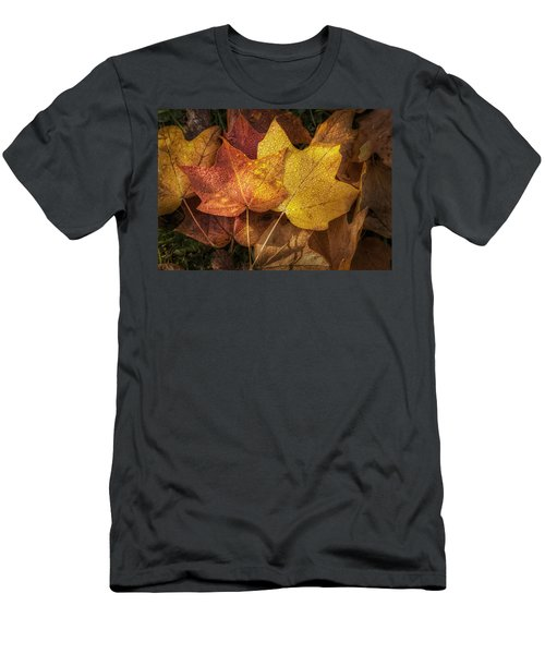 Dew On Autumn Leaves Men's T-Shirt (Athletic Fit)