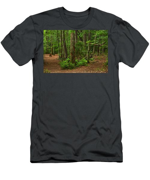 Diverted Paths Men's T-Shirt (Athletic Fit)