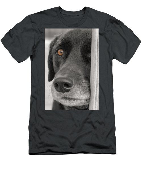 Dog Peek A Boo Men's T-Shirt (Athletic Fit)