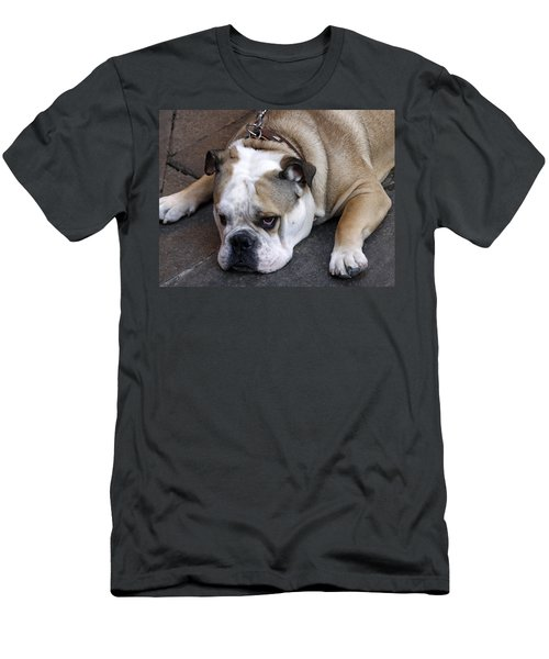 Dog. Tired. Men's T-Shirt (Athletic Fit)