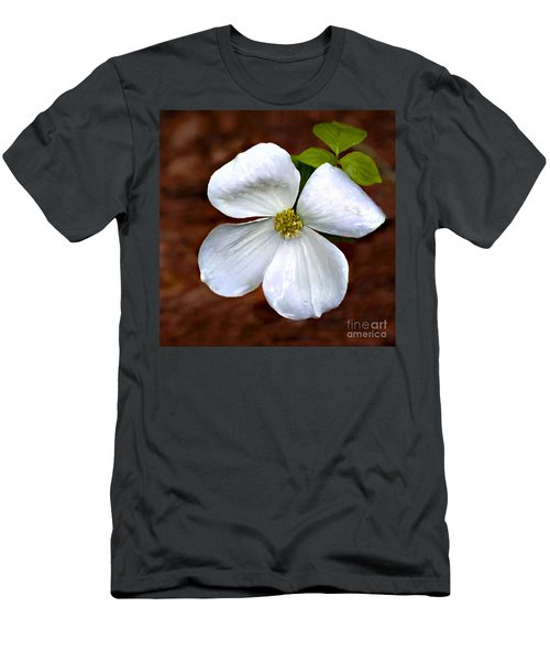 Dogwood Blossom Yosemite Men's T-Shirt (Athletic Fit)