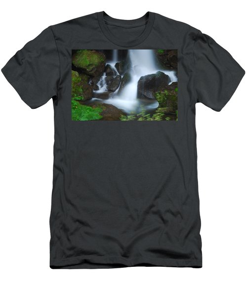Dragon Head Falls Men's T-Shirt (Athletic Fit)