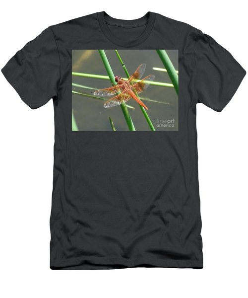 Dragonfly Orange Men's T-Shirt (Athletic Fit)