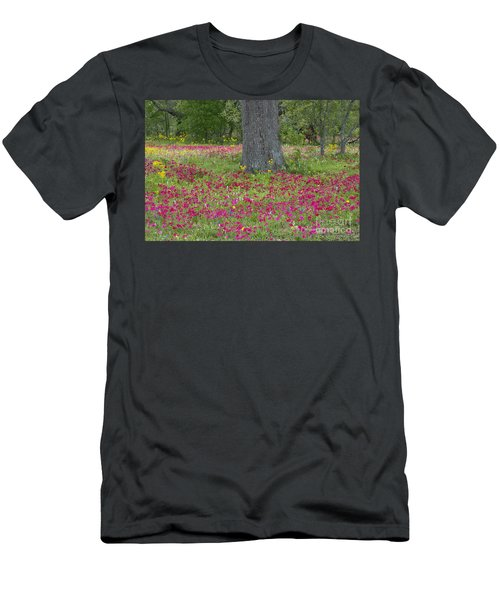 Drummonds Phlox And Crown Tickweed Central Texas Men's T-Shirt (Athletic Fit)