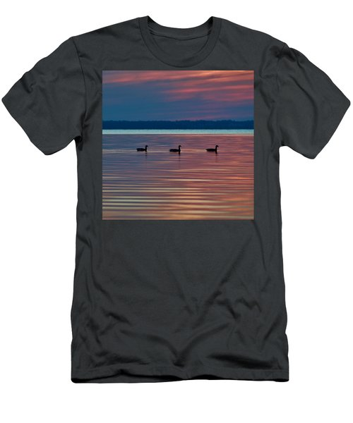 Ducks In A Row Men's T-Shirt (Athletic Fit)
