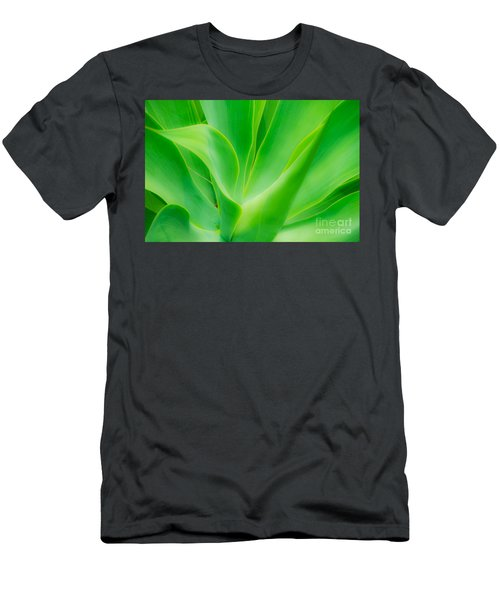 Dwarf Agave Men's T-Shirt (Athletic Fit)