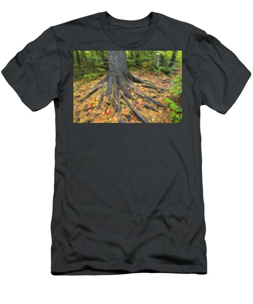 Easter White Pine Tree Trunk Surrounded Men's T-Shirt (Athletic Fit)
