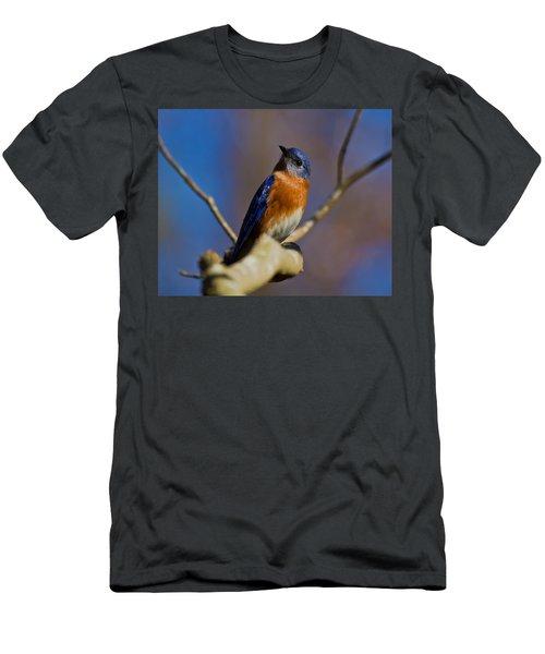 Men's T-Shirt (Slim Fit) featuring the photograph Eastern Bluebird by Robert L Jackson