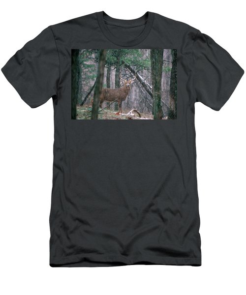 Eight Point Whitetail Deer Buck Men's T-Shirt (Athletic Fit)