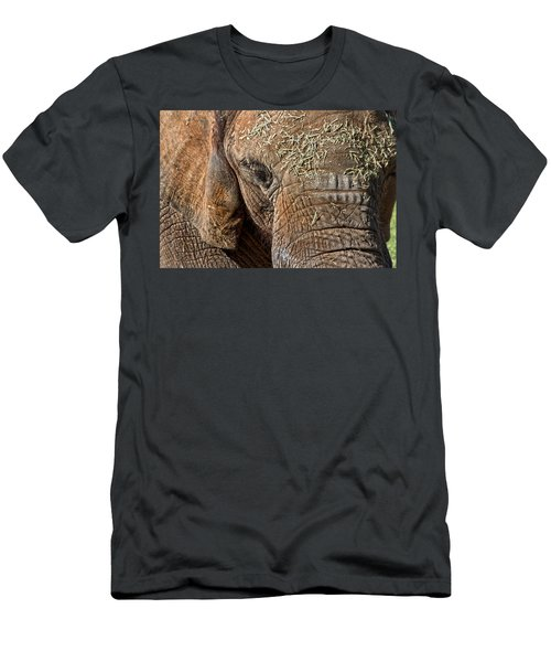 Elephant Never Forgets Men's T-Shirt (Athletic Fit)