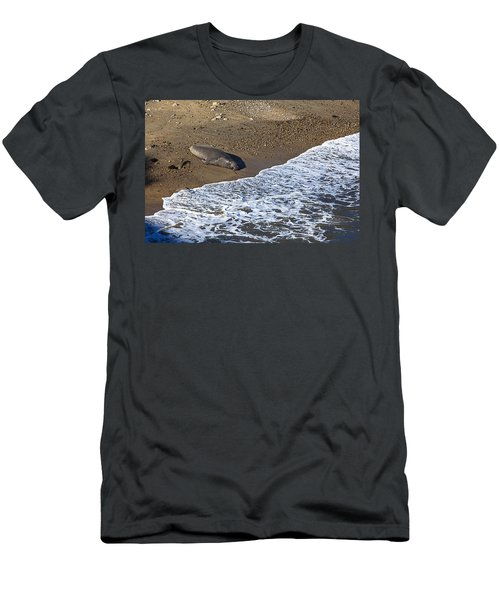 Elephant Seal Sunning On Beach Men's T-Shirt (Athletic Fit)