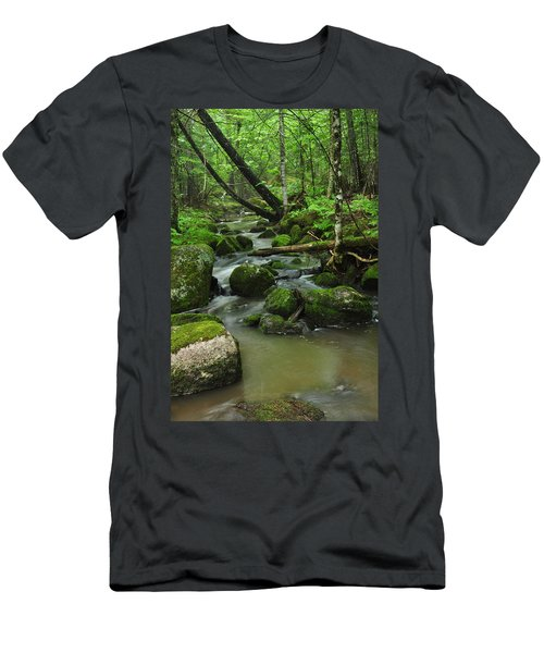 Emerald Forest Men's T-Shirt (Athletic Fit)