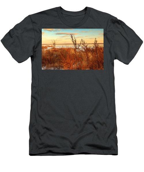 Emiquon Men's T-Shirt (Athletic Fit)