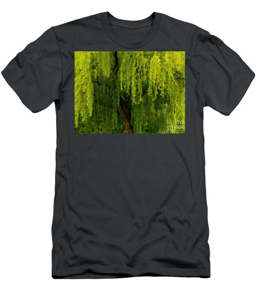 Enchanting Weeping Willow Tree  Men's T-Shirt (Slim Fit) by Carol F Austin