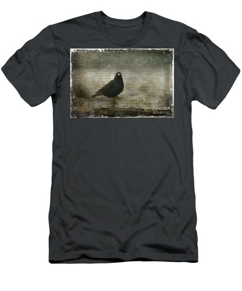 European Starling Men's T-Shirt (Athletic Fit)