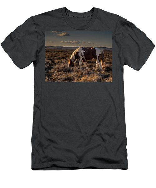 Evening Solitude In Sand Wash Basin Men's T-Shirt (Athletic Fit)
