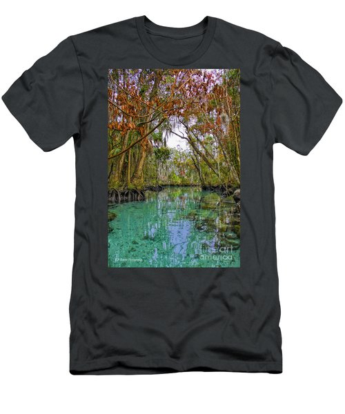 Fall Colors Along Three Sisters Spring Run Men's T-Shirt (Athletic Fit)