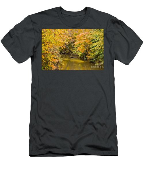 Fall Creek Foliage Men's T-Shirt (Athletic Fit)