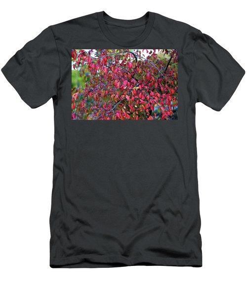 Fall Foliage Colors 05 Men's T-Shirt (Athletic Fit)