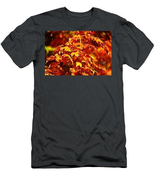 Fall Foliage Colors 14 Men's T-Shirt (Athletic Fit)