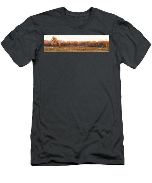 Fall Graze Men's T-Shirt (Athletic Fit)