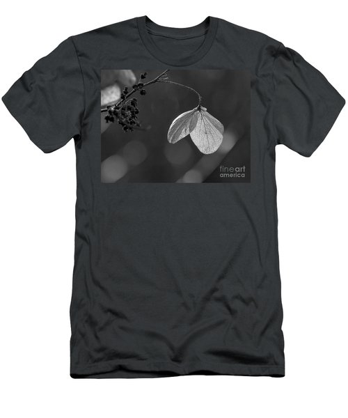 Hydrangea Flower Uw Arboretum Madison Wisconsin Men's T-Shirt (Athletic Fit)