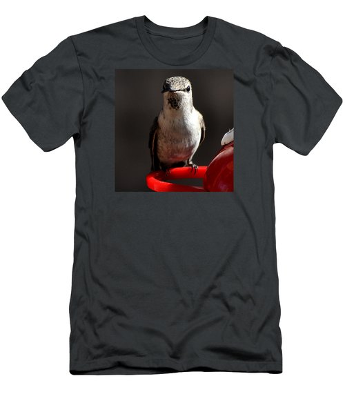 Men's T-Shirt (Slim Fit) featuring the photograph Female Anna Hummingbird by Jay Milo