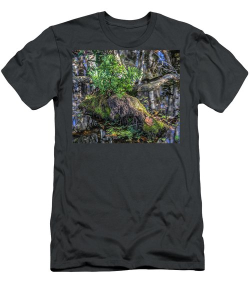 Fern In The Swamp Men's T-Shirt (Athletic Fit)