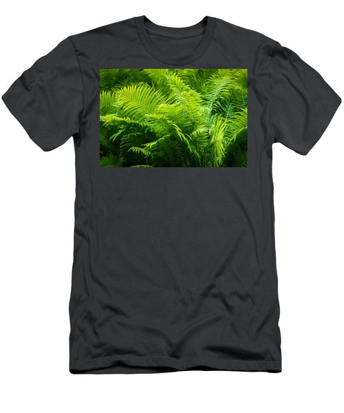 Ferns 1 Men's T-Shirt (Athletic Fit)