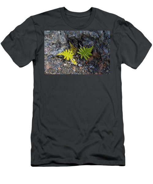 Ferns In Volcanic Rock Men's T-Shirt (Athletic Fit)