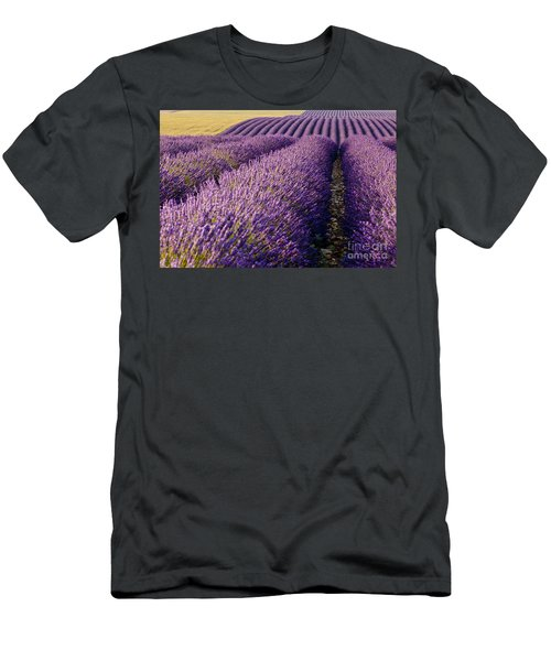 Men's T-Shirt (Athletic Fit) featuring the photograph Fields Of Lavender by Brian Jannsen