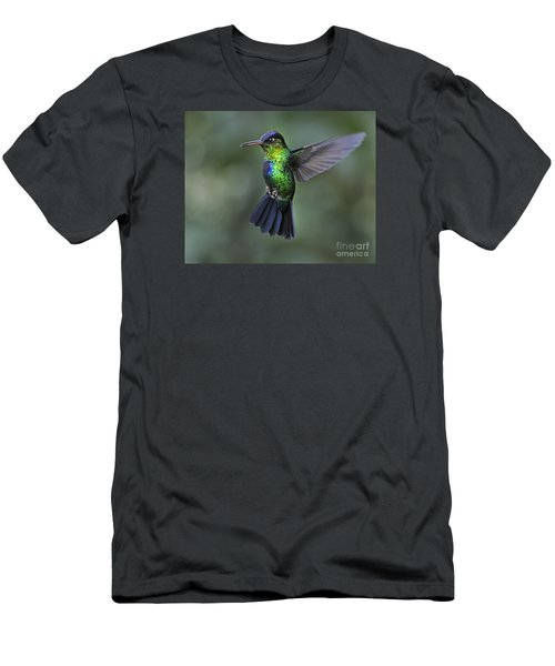 Fiery-throated Hummingbird..  Men's T-Shirt (Slim Fit) by Nina Stavlund