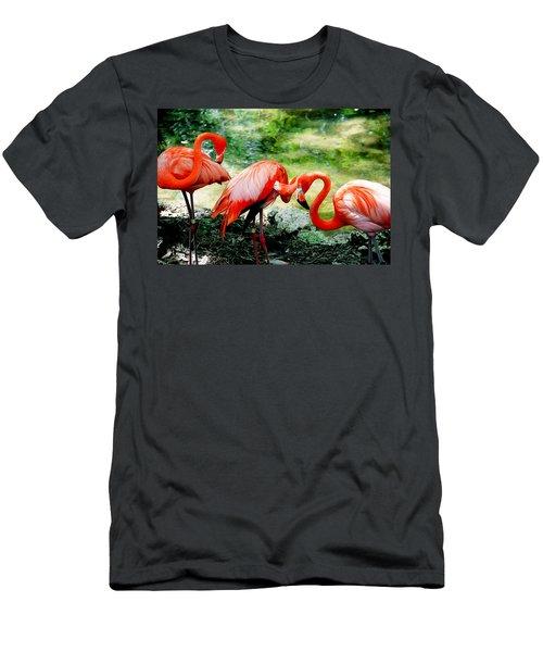 Flamingo Friends Men's T-Shirt (Athletic Fit)