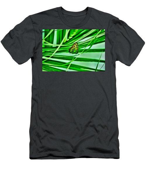 Flutter By Men's T-Shirt (Athletic Fit)