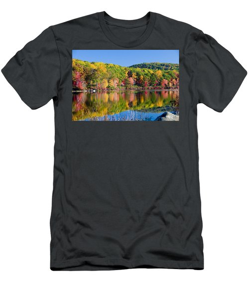 Foilage In The Fall Men's T-Shirt (Athletic Fit)
