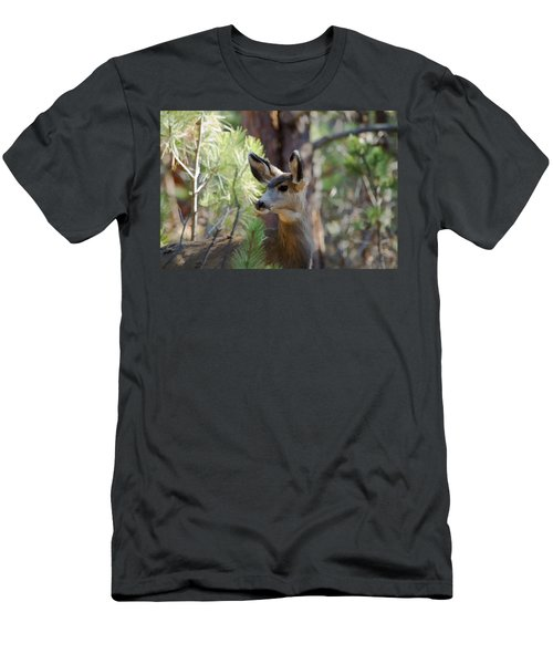Forest Doe Men's T-Shirt (Athletic Fit)