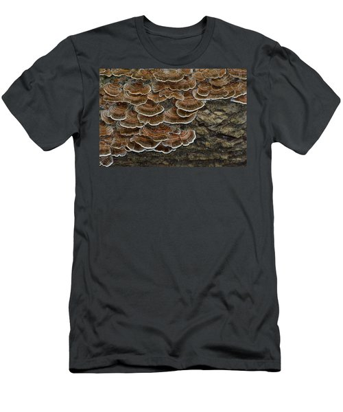 Forest Floor Number 3 Men's T-Shirt (Athletic Fit)