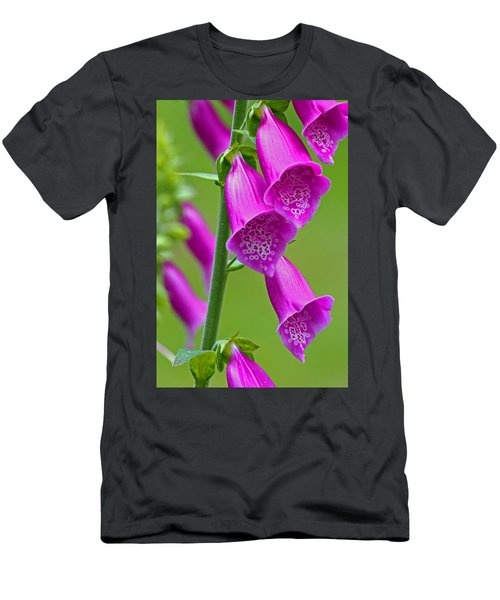 Foxglove Digitalis Purpurea Men's T-Shirt (Athletic Fit)