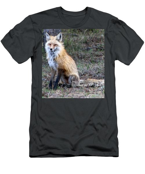Foxy Lady  Men's T-Shirt (Slim Fit) by Fiona Kennard