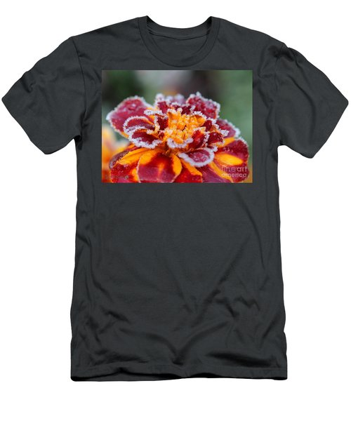 French Marigold Named Durango Red Outlined With Frost Men's T-Shirt (Athletic Fit)