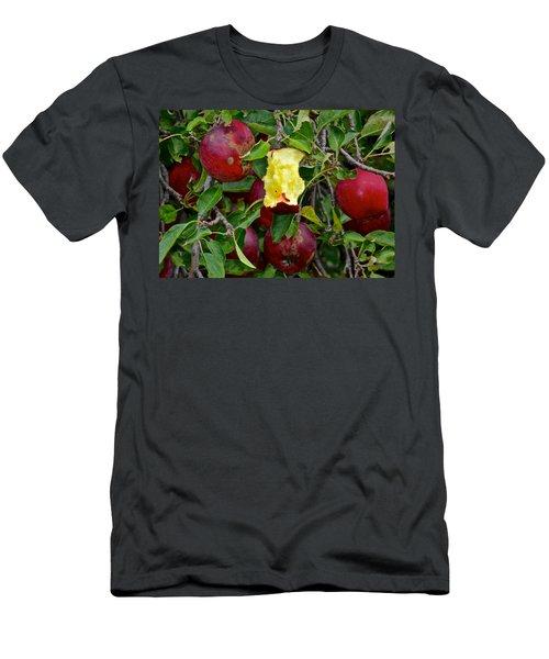 Fresh Fruit Men's T-Shirt (Athletic Fit)